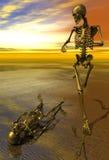 Skelett, das mit Sonnenuntergang rüttelt Stockfotos