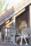 skelett stockfotografie