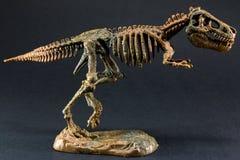 Skelett för dinosaurietyrannosarie T Rex på svart bakgrund royaltyfri foto