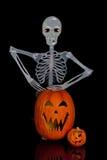 skelett för halloween stålarlykta o royaltyfri fotografi