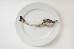 Skelett- fisk på en platta, fishbone Arkivfoton