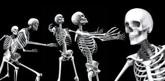 Skelett- grupp 2 Royaltyfria Bilder