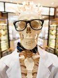 Skelett i doktorsskyddsrock med exponeringsglas och flugan Arkivfoto