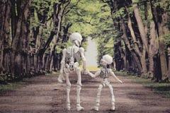 Skelett i trät Fotografering för Bildbyråer