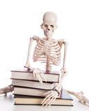 Skelett med böcker Royaltyfri Bild