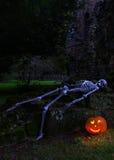 Skelett med pumpa Arkivbilder