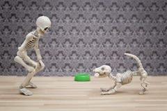 Skelett och hans skelett- hund Royaltyfri Foto