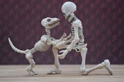 Skelett och hans skelett- hund Royaltyfri Bild