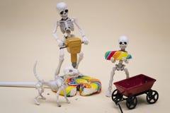 Skelett och klubba Arkivfoto