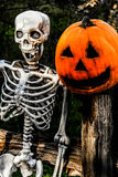 Skelett och Pumpkinhead 1 Royaltyfri Bild