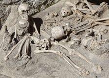 Skelett på Herculaneum Arkivfoto