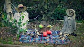Skelett-Picknick stock video