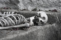 Skelett som ligger i allhelgonaafton Royaltyfria Foton