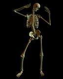 skelett- spöklik standing för grön lighting royaltyfri illustrationer
