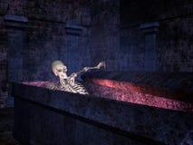 skelett- tomb Royaltyfria Bilder