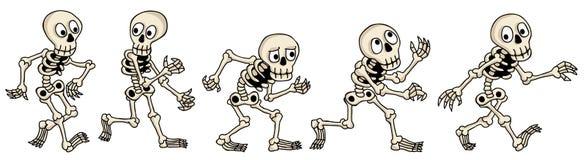 skelette Stockfoto