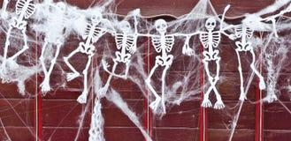 skeletten Royalty-vrije Stock Afbeeldingen