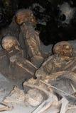 Skeletten in Bootloodsen, de Archeologische Plaats van Herculaneum, Campania, Italië Stock Afbeelding