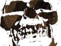 skeletton Obrazy Stock