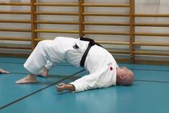 Skelleftea, Suède - 7 février 2011 Pratique en matière de karaté de Shotokan avec Sensei, Robin Nyholm et Tero Nyholm Techniques  Photographie stock