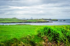 The Skellig Islands from Valentia Island. View of the Skellig Islands from Valentia Island in the Ring of Kerry, Ireland Royalty Free Stock Photos
