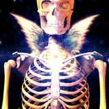 Dark Angel. Skelton with angel wings. Human elements were created with 3D software and are not from any actual human likenesses stock illustration