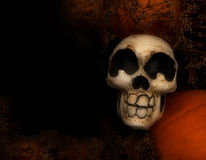 Skelton Background Stock Photo