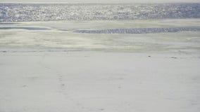Sken av vatten på floden arkivfilmer
