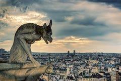 Skenbild (vattenkastare) av domkyrkan av Notre Dame de Paris Arkivfoto