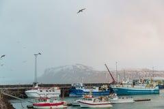 skepp i hamn och härliga snö-täckte berg på horisont i Reykjavik, Island Royaltyfri Fotografi