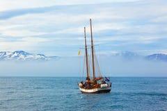 Skepp med turister på valsafari i havet mot bakgrunden av snö-korkade berg iceland arkivbilder