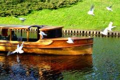 Skepp och duvor royaltyfri foto