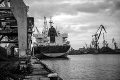 Skepp och kranar på en portterminal Arkivbild