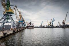Skepp och kranar på en portterminal Arkivbilder