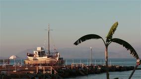 Skepp och palmträd på stranden corfu greece stock video