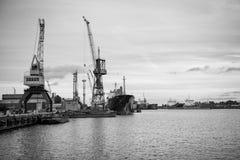 Skepp- och portkranar på reparationsområde Royaltyfri Bild