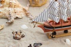 Skepp skal på den sandiga stranden Arkivfoton