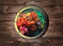 Skeppfönstret med den färgrika korallreven i det tropiska havet som är undervattens- på den tropiska havs- eller havön Arkivfoto