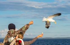 Skepppassagerarna som matar seagulls Arkivbilder