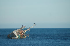 Skeppsbrott i Nordsjön Arkivbilder