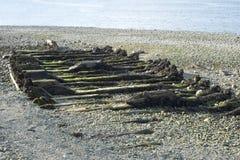 Skeppsbrott på kust Royaltyfri Fotografi