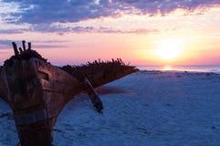 Skeppsbrott på stranden Arkivfoto
