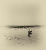 Skeppsbrutet fartyg på att gå tillbaka kusten Royaltyfria Foton