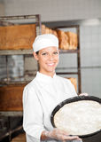 Säker kvinnlig bagare Holding Dough Tray At Bakery Royaltyfria Bilder