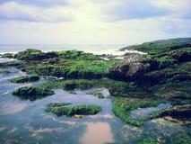 Skerry del mar Fotografía de archivo