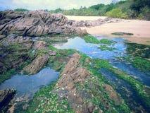 Skerry del mar Fotos de archivo libres de regalías