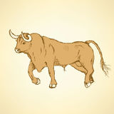 Sketch angry bull in vintage style Stock Photography