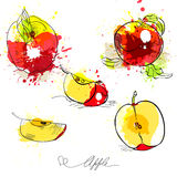 Sketch of apple Stock Images