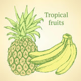 Sketch bananas and pineapple in vintage style Stock Image