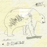 Sketch with Bear. On grunge background Royalty Free Stock Photo